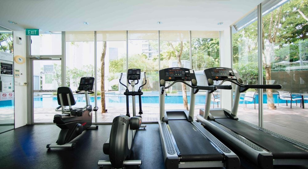 Echo gym cleaning service specialist